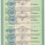 Лицензия Лист №2 ЧОП